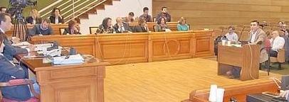 El Círculo de Empresarios interviene por primera vez en el pleno del Ayuntamiento